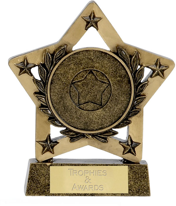 "Multi Award Economy Star 12.5cm (5"")"