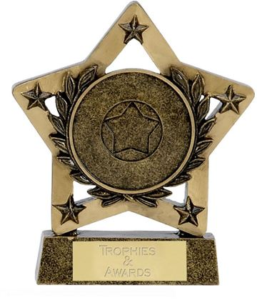 "Multi Award Economy Star 12.5cm (5"")"