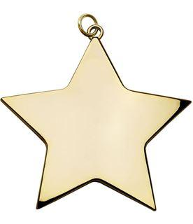 "Gold High Polish Star Achievement Medal 80mm (3.25"")"