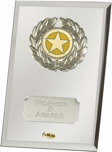 "Silver Crest Mirror Award 17.5cm (7"")"