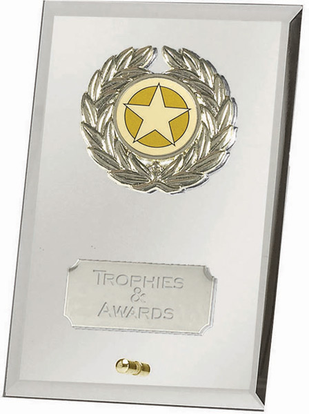 "Silver Crest Mirror Award 12.5cm (5"")"