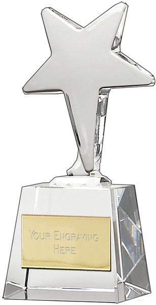 "Ice Star Award 16.5cm (6.5"")"