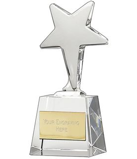 "Ice Star Award 14cm (5.5"")"