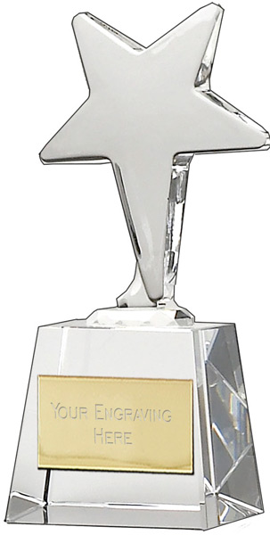"Ice Star Award 14cm (5.5"")"