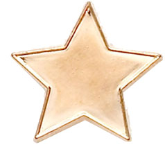 Bronze Star Lapel Badge 20mm