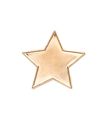 Bronze Star Lapel Badge 20mm