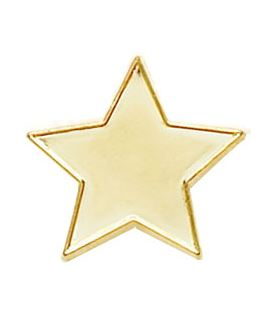 Gold Star Lapel Badge 20mm