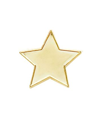 Gold Star Lapel Badge 20mm
