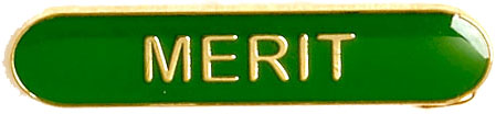 Merit Lapel Bar Badge Green 40mm x 8mm