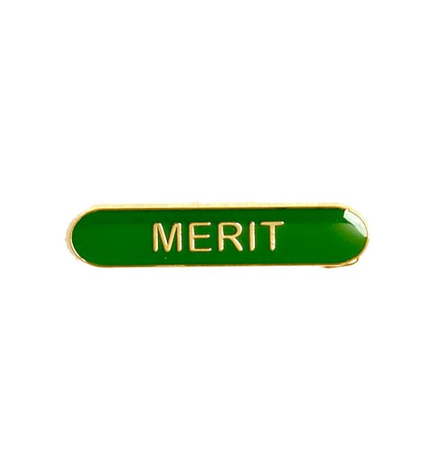 Merit Lapel Bar Badge Green 40mm x 8mm