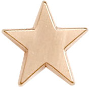 Bronze Star Lapel Badge 16mm