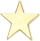 Gold Star Lapel Badge 16mm
