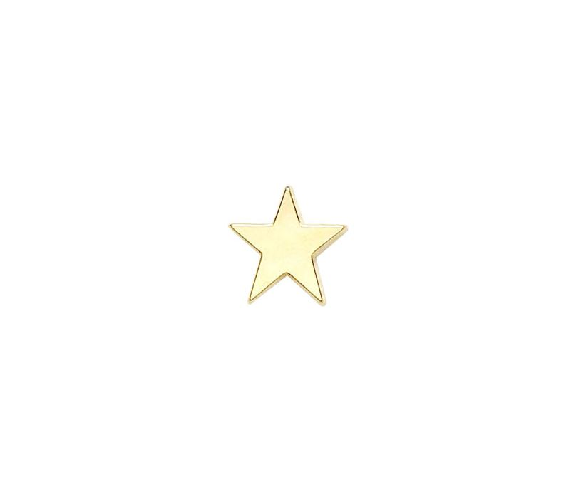 Gold Star Lapel Badge 16mm