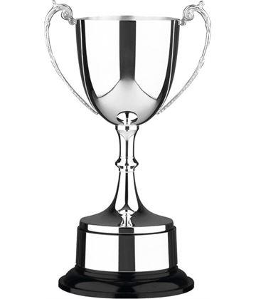 """Staffordshire Presentation Cup 35.5cm (14"""")"""