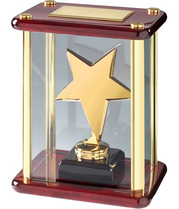 "Gold Metal Star Award in Glass Case 18.5cm (7.25"")"