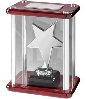 "Silver Metal Star Award in Glass Case 18.5cm (7.25"")"
