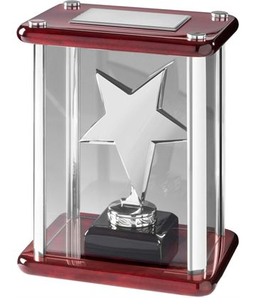 "Silver Metal Star Award in Glass Case 18.5cm (7.25"")"