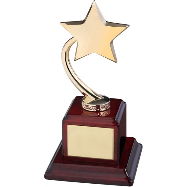"Gold Metal Shooting Star Award on Square Base 23.5cm (9.25"")"