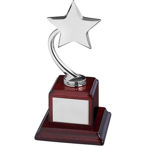 "Silver Metal Shooting Star Award on Square Base 23.5cm (9.25"")"