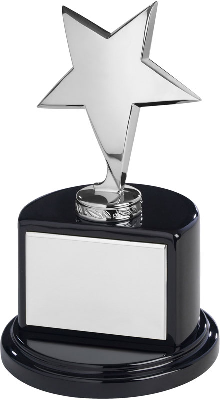 "Polished Silver Metal Star Award on Semi-Circle Base 19cm (7.5"")"