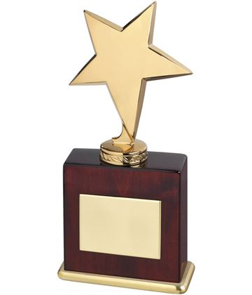 "High Polished Metal Star Award In Gold Finish 20.5cm (8"")"