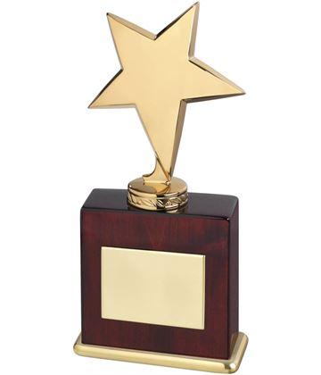 "High Polished Metal Star Award In Gold Finish 20.5cm (8"")"