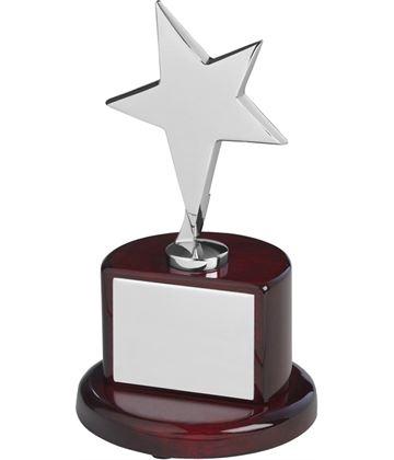 "Polished Silver Metal Star Award on Rosewood Base 18cm (7"")"