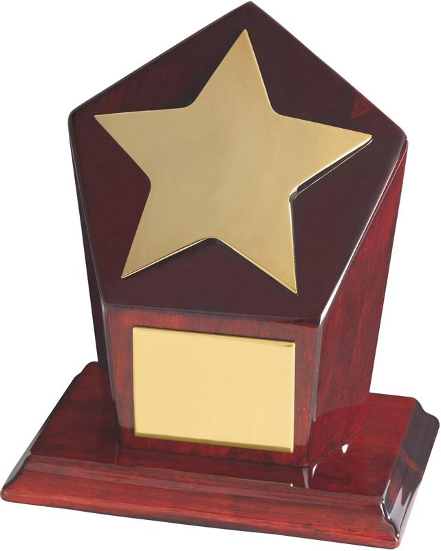 "Gold Finish Star Award on Piano Wood Base 15cm (6"")"