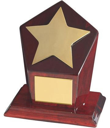 "Gold Finish Star Award on Piano Wood Base 15cm (6"")"