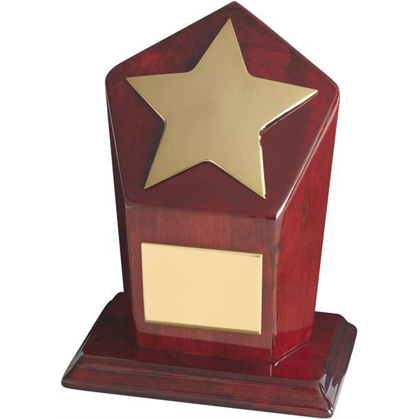 "Gold Finish Star Award on Piano Wood Base 18cm (7"")"
