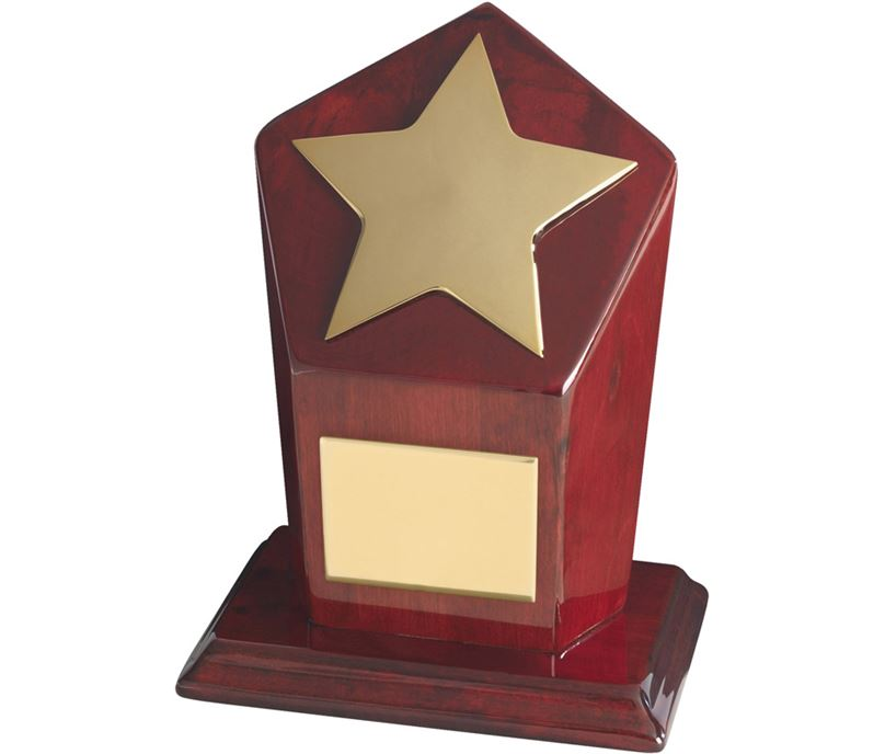 "Gold Finish Star Award on Piano Wood Base 18cm (7"")"