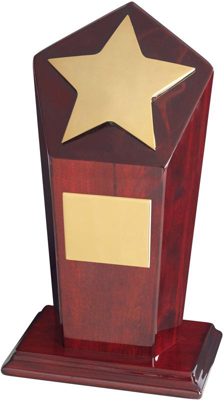 "Gold Finish Star Award on Piano Wood Base 23cm (9"")"