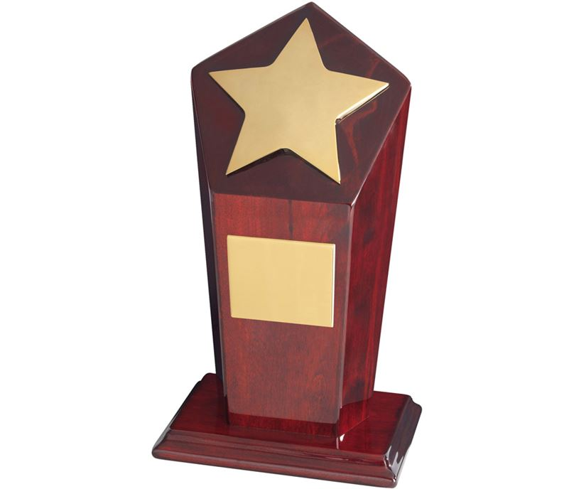 "Gold Finish Star Award on Piano Wood Base 23cm (9"")"