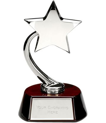 "Silver High Polished Star on Wooden Base 20.5cm (8"")"