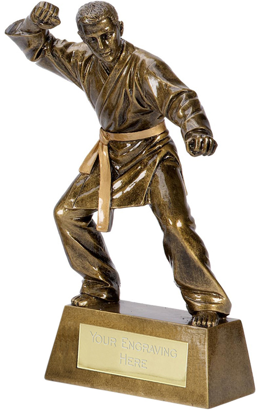 "Antique Gold Pinnacle Karate Trophy 18.5cm (7.25"")"