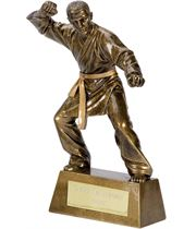 "Antique Gold Pinnacle Karate Trophy 15cm (6"")"