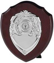 """Individual Perpetual Shield 20.5cm (8"""")"""