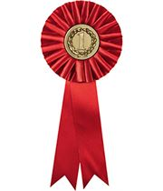 """One Tier Red 1st Place Rosette with 2"""" Centre 30.5cm (12"""")"""