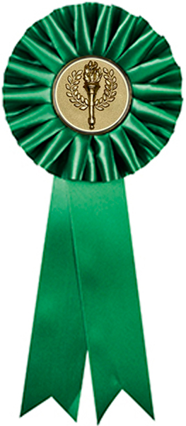 "One Tier Green Participant Rosette with 2"" Centre 30.5cm (12"")"