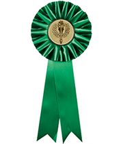 """One Tier Green Participant Rosette with 2"""" Centre 30.5cm (12"""")"""