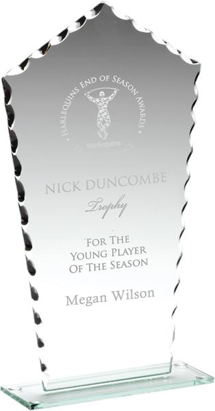 """Clear Cut Edge Glass Plaque Award 23cm (9"""")"""