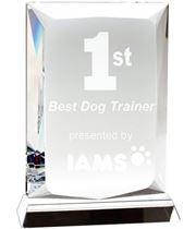 "Heavyweight Ambition Optical Crystal Plaque Award 16cm (6.25"")"
