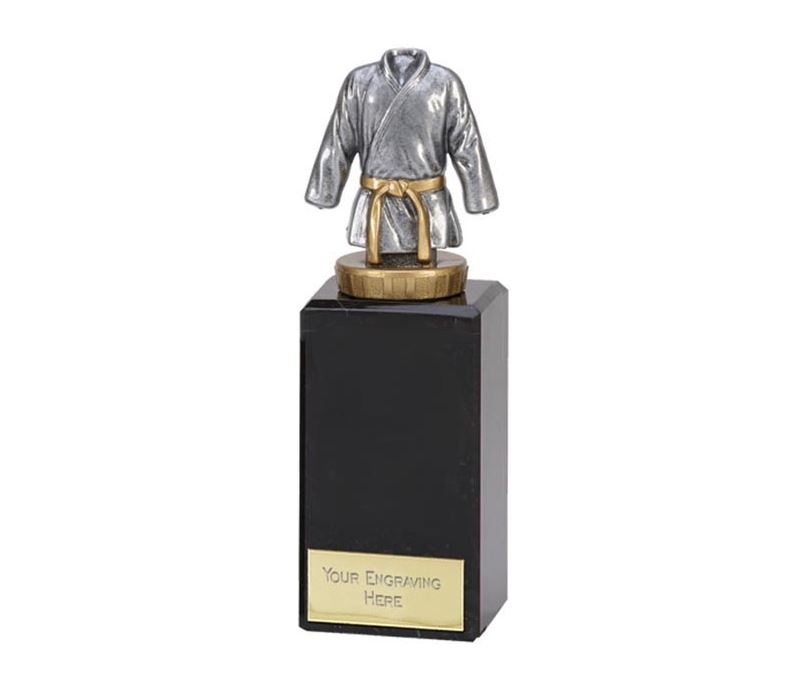 "Silver & Gold Plastic Martial Arts trophy on Marble Base 18cm (7"")"