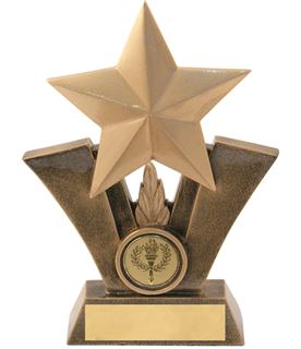 "Gold Resin Star Trophy with Centre Disc 19cm (7.5"")"
