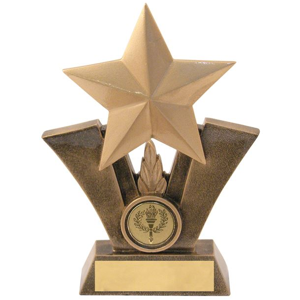 """Gold Resin Star Trophy with Centre Disc 19cm (7.5"""")"""
