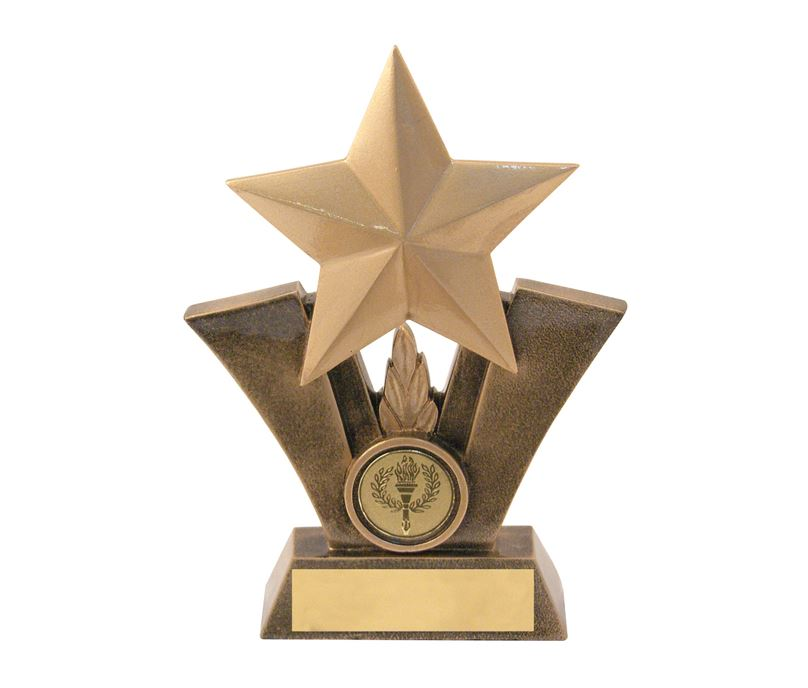 "Gold Resin Star Trophy with Centre Disc 16cm (6.25"")"