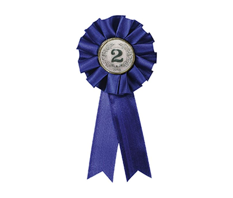 "2nd Place One Tier Blue Rosette 12.5cm (5"")"