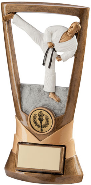 "Gold Resin Velocity Karate Action Figure Plaque 18cm (7"")"