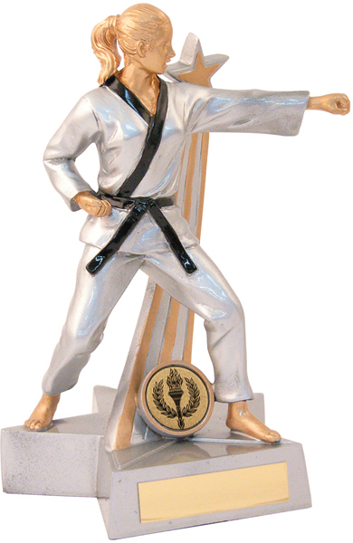 "Silver Female Martial Arts Figure Trophy 19.5cm (7.75"")"