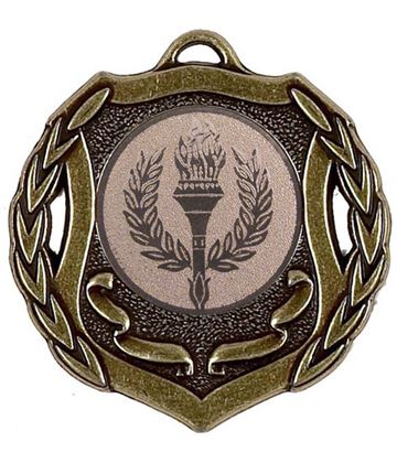 "Bronze Multi Sport Shield Medal 50mm (2"")"